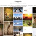 fotografe-naturaliste-donne